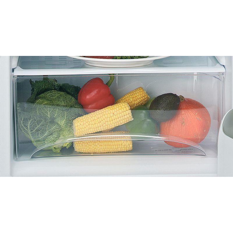 Hotpoint-Refrigerator-Free-standing-RLA36P.1-Global-white-Drawer
